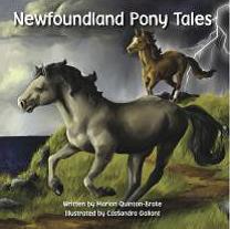 nl pony