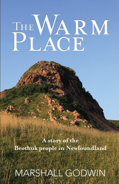 drc-publishing-the-warm-place-cover